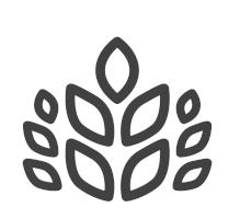Bio-Marktfruchtbetriebe
